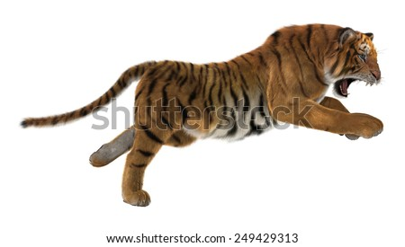 Stock Photo 3D digital render of a hunting big cat tiger isolated on white background