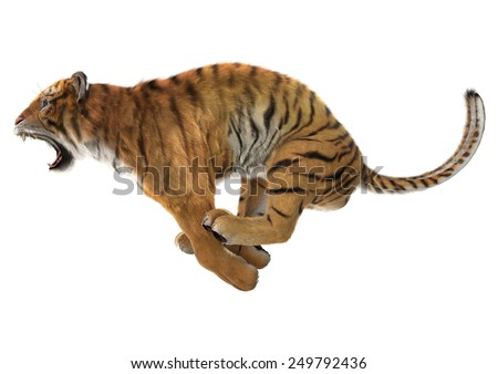 Stock Photo 3D digital render of a jumping roaring tiger isolated on white background