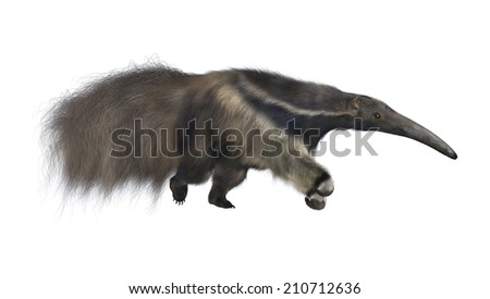 3D digital render of an amazing animal giant anteater isolated on white background