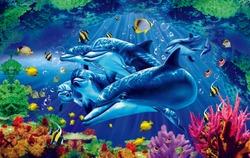 3d Fish Aquariom Design