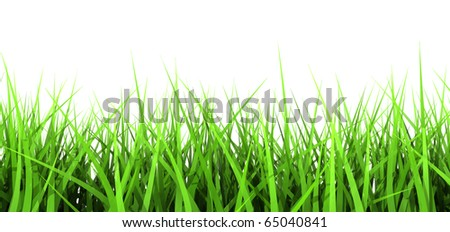 3D generated Green Blades of Grass Isolated on White Background