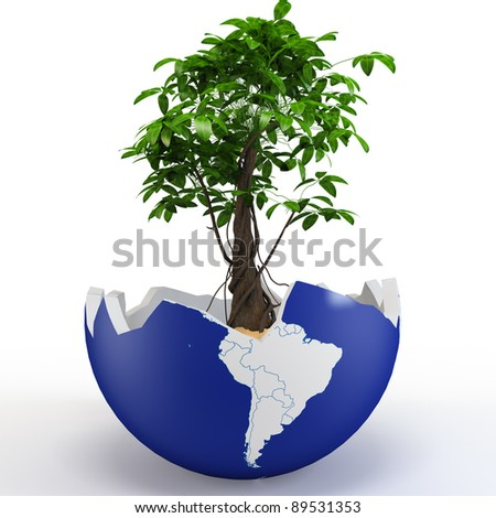 3d globe shell with tree and sand on white background