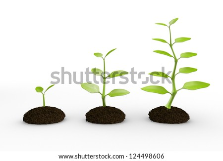 3d green plant growing in soil. 3d render
