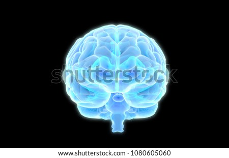 3D human brain X ray graphic scan in front view glowing on dark background with clipping path for use in any backdrop
