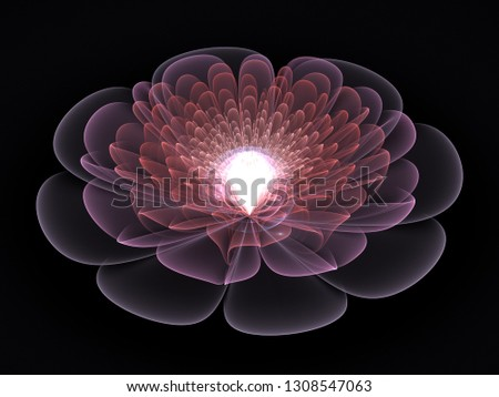 Stock Photo 3D Illustration - Holographic Flower, Abstract Flower, Waves of Light, Symmetrical Organic Shape, Curved Lines, Futuristic Contemporary Abstract Organic Shape, Transparent Pink Petals