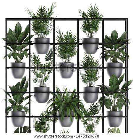 3d illustration of exotic plants, vertical garden #1475120678