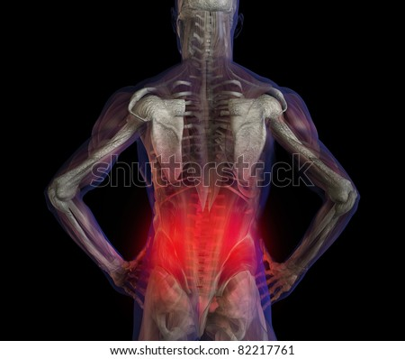 3D illustration of human male anatomy and skeleton. Lower back pain.