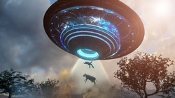 3D Illustration of Man and cow floating to inside of ufo alien ship. Concept of alien abduction 3d render