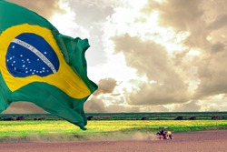 3d illustration of the flag of Brazil. Independence Day. September 7th. Symbol of the republic. Brazil's flag. Rural landscape. Agriculture field. Soy planting. The strength of the field.