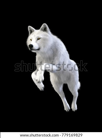 3d illustration white wolf isolate on dark background. Arctic wolf. the canidae family and a subspecies of the gray wolf.