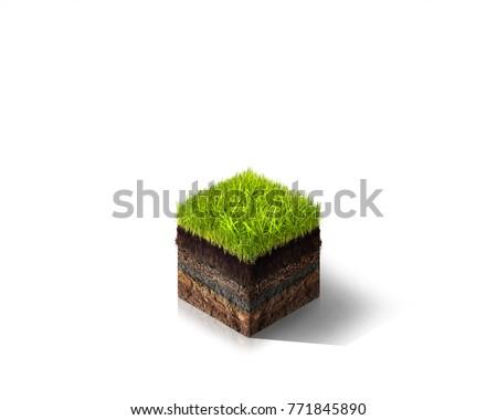 3D Isometric Grass #771845890