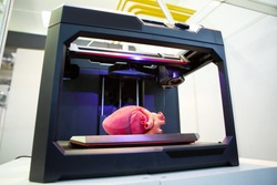 3d printer with a printed human heart