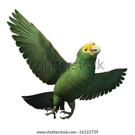3D render depicting a double yellow-headed amazon parrot in flight.