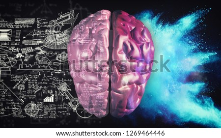3d render illustration.  Right and left hemisphere of the brain . Creative half and logical half of human mind.