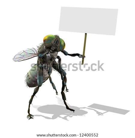 3D render of a giant fly holding a blank sign.