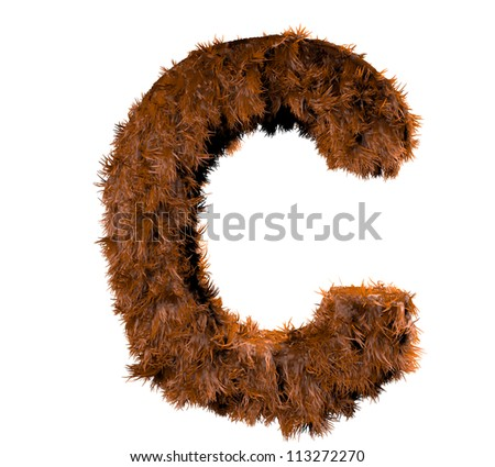 3d render of a hairy c