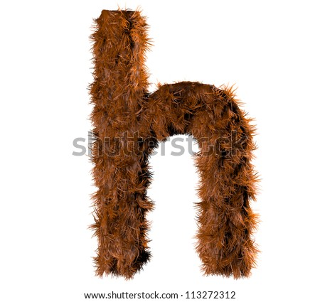 3d render of a hairy h