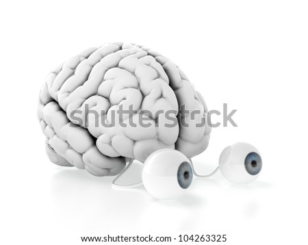 3d render of brain with eyes on white background