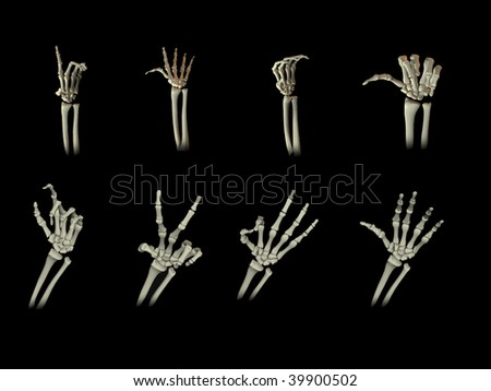 3d render of hand skeleton doing various gestures