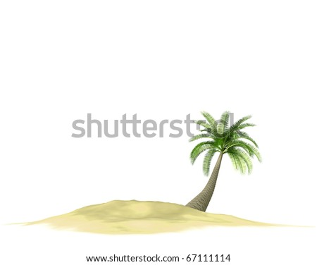 3d render of island with palm-tree on white