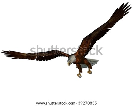 3D rendered eagle on white background isolated