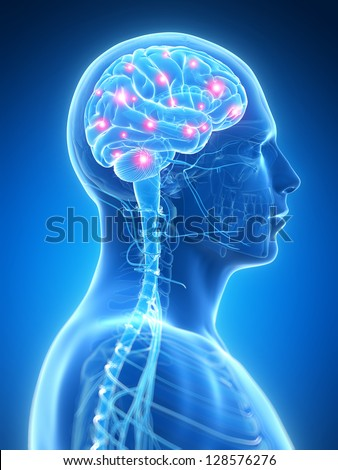 3d rendered illustration - active brain