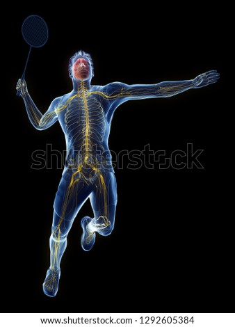 3d rendered medically accurate illustration of the nervous system of a badminton player