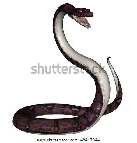3D rendered snake on white background isolated