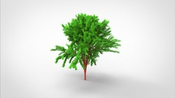 3d rendering a tree created by using a blender tool. Realistic 3d tree. 3d illustration a tree