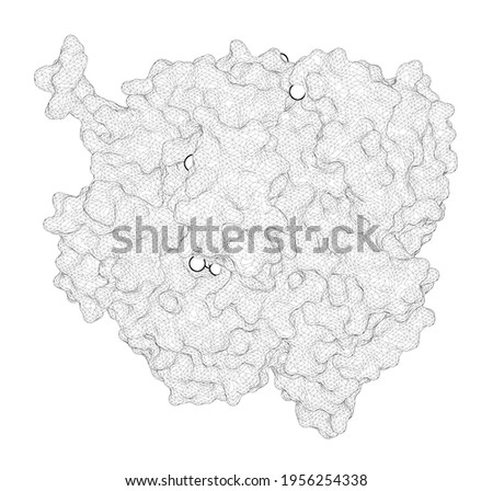 3D rendering as a line drawing of a biological molecule. Mispairs with Watson-Crick base-pair geometry observed in ternary complexes of an RB69 DNA polymerase variant. Foto stock ©