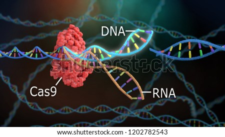 3D Rendering Crispr DNA Editing