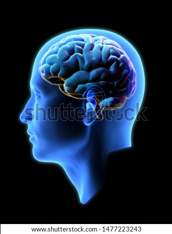 3D rendering human head side view xray shading with colorful glowing brain illustration isolated on black background with clipping path for die cut to compositing on any artwork design