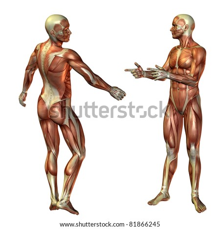 3D Rendering Muscle Man Standing