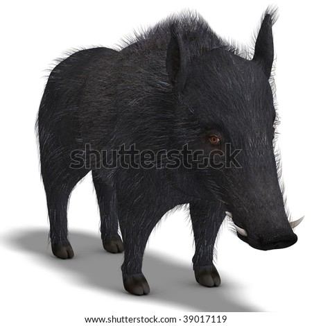3D rendering of a dangerous black boar is stiff-bristled with clipping path and shadow over white