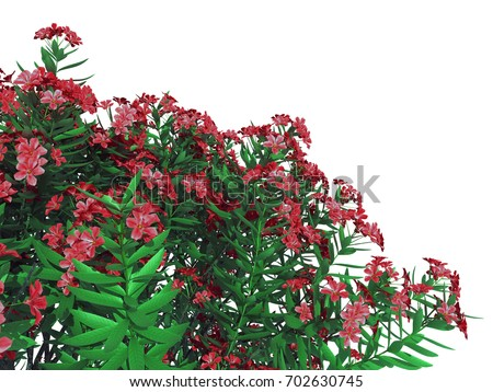 Shutterstock 3d rendering of a foreground flower bush isolated on white