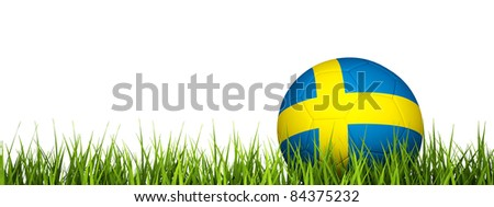 3d rendering of a soccer ball on grass.Sweden