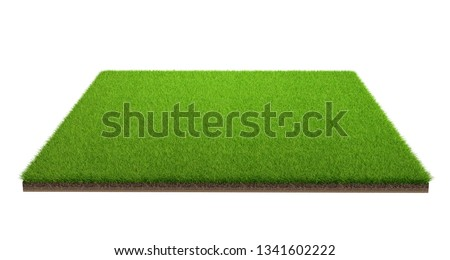 3d rendering of green grass field isolated on a white background with clipping path. Sports field. Exercise and recreation place. #1341602222