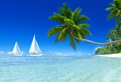 3D Sail boats with blue sky and palm tree.