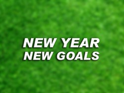3D Text New Year New Goals on blurred green natural background. 3D rendered royalty free stock picture. This image can be used for an online website banner ad or a print postcard. Copy Space for text