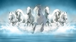 3D Wallpaper Seven Horses running