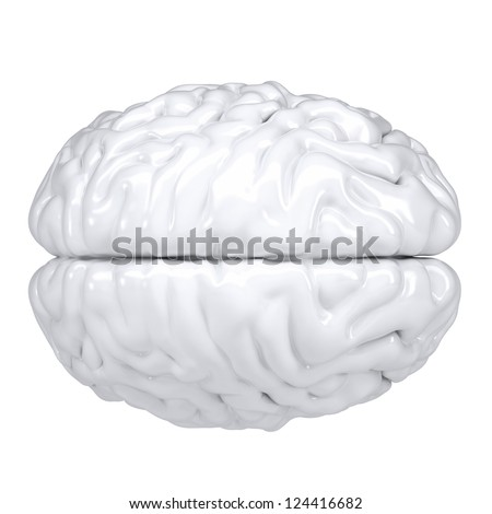 3d white human brain. View from above. Isolated render on a white background