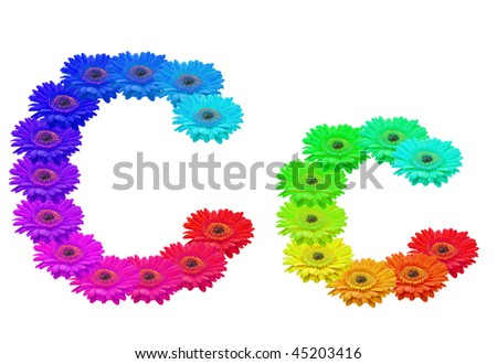 Daisy Upper and Lower Case C isolated with clipping path