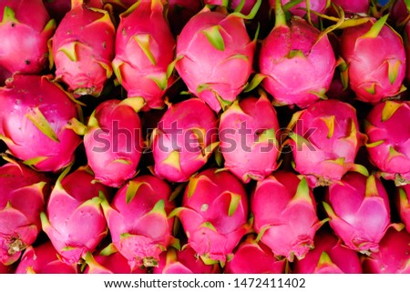 Dark pink dragon fruit, arranged in rows of various sizes, popularly eaten as fresh fruit. Has a sweet and sour taste