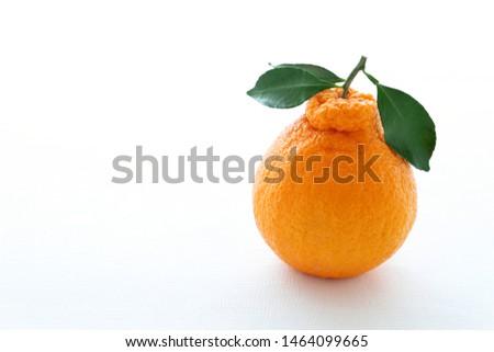 """Decopon or Shranui""Japanese tangerine with tangerine leaves on white background #1464099665"