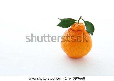 """Decopon or Shranui""Japanese tangerine with tangerine leaves on white background #1464099668"