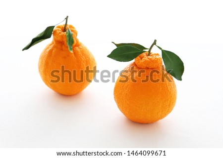 """Decopon or Shranui""Japanese tangerine with tangerine leaves on white background #1464099671"