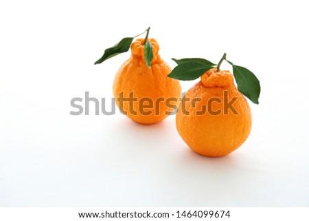 """Decopon or Shranui""Japanese tangerine with tangerine leaves on white background #1464099674"
