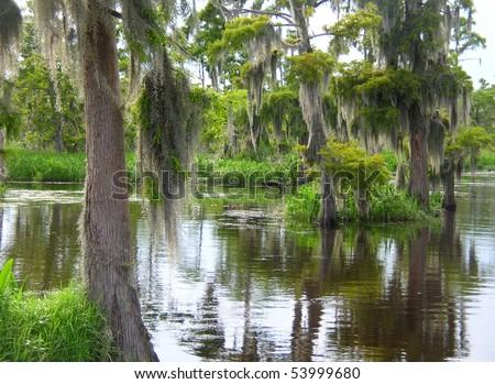 Deep Bayou Country