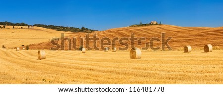 180 degree panorama of a golden field with bales of hay in Tuscany, Italy