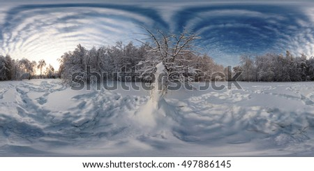 360 degree spherical panorama from Siberia Russian Winter. The picture with the snow, snowman, trees in the forest on a frosty sunny day.